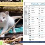 Calendario-Maggio 2015