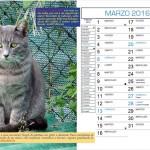 Calendario -Marzo 2016